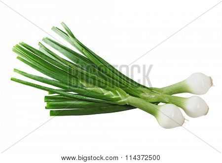 Cebollitas green pearl sclallions onions isolated on white