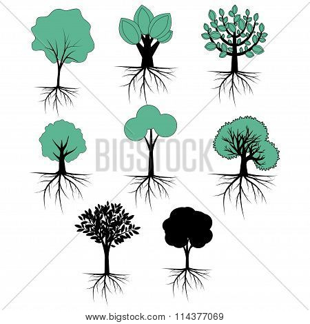 Abstract trees collection with roots cartoon style