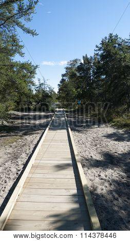 Boardwalk To Whitefish Pont