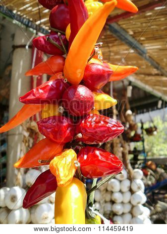 Red And Yellow Chili Pepper At Market Stand In Majorca, Spain