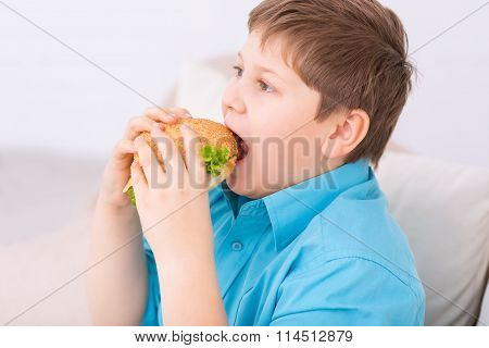 Chubby kid taking a bite off cheeseburger.