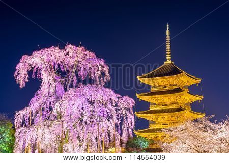 Kyoto, Japan at To-ji pagoda in the springtime.