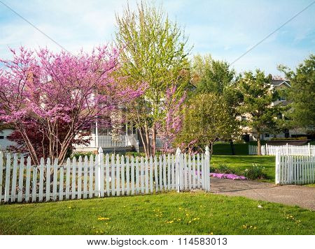 Spring Front Yard
