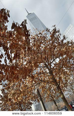 Ground Zero. Autumn.