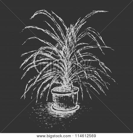 House Plant In Flower Pot Isolated On Dark Gray Background. Palm Tree Ink Sketch. Hand-drawn element