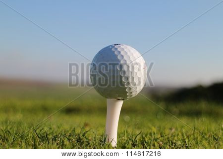 White Golf Ball on Tee Close Up