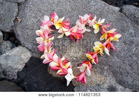 Heart shaped hawaiian plumeria Lei