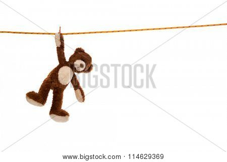 Lonesome isolated plush teddy bear hanging on a clotheline on white background.