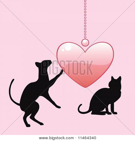 Black cats withe heart
