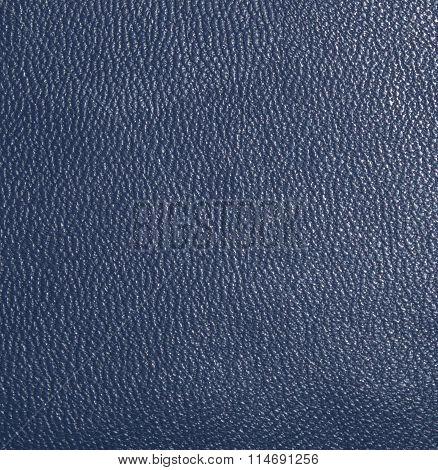 Dark blue skin, streaked. Leather texture. Closeup
