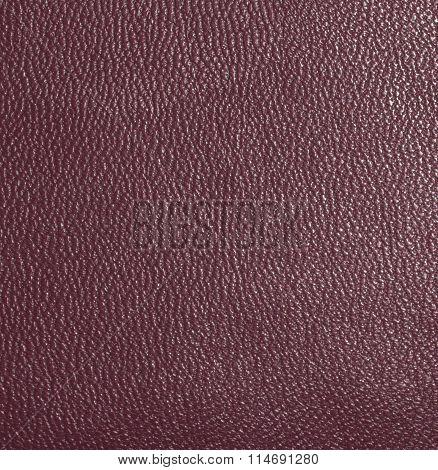 Dark red skin, streaked. Leather texture. Closeup