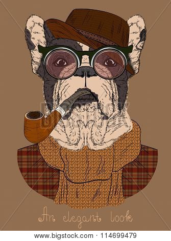 French Bulldog With Tobacco Tube And Glasses