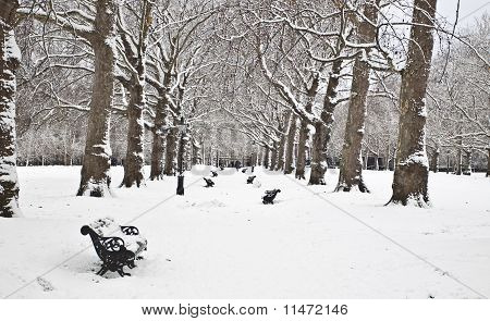 Winter in Green Park