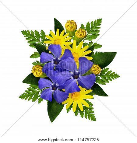 Periwinkle and daisy flowers bouquet isolated on white