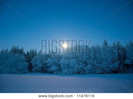 Nightly landscape with snow and moon