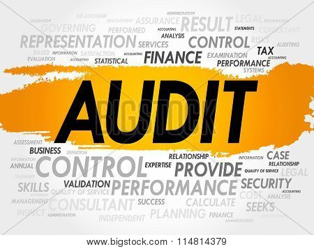 Audit Word Cloud