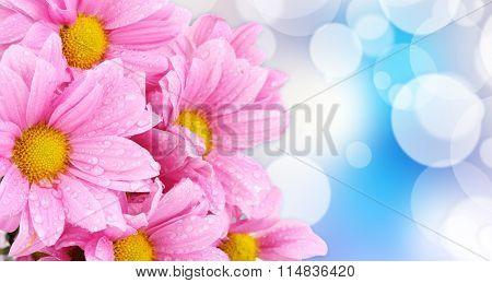 Beautiful boquet  on light blue background