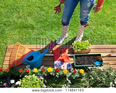 Woman with gardening tools, flowers and pots, spring gardening concept