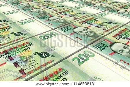 Swazi emalangeni bills stacked background. Computer generated 3D photo rendering.