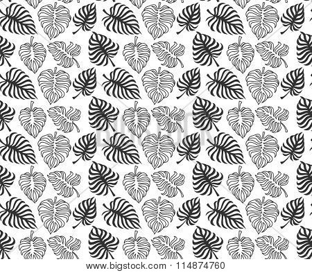 Tropic leaves of monstera on white background. Vector. Seamless pattern