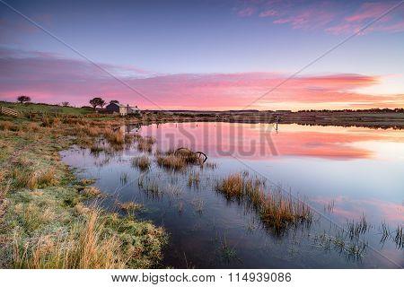 Sunrise over Dozmary Pool