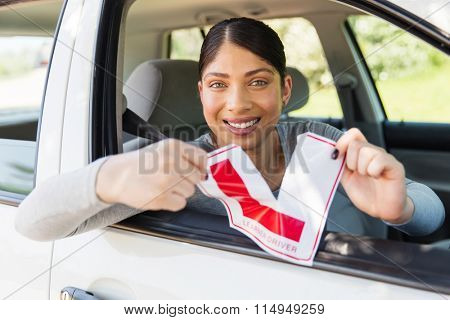 happy female driver tearing up her learner driver sign