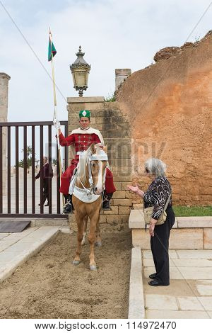 Old Tourist Woman Talk To Horse