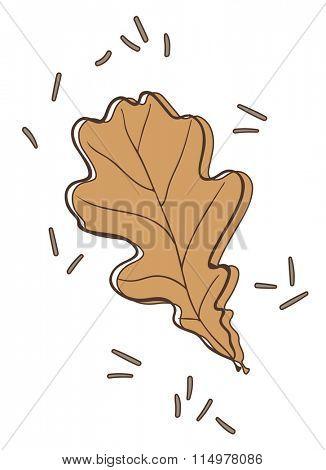 oak tree leaf vector illustration