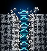 Genetic research success concept as a medical scientific breakthrough symbol with a dna strand breaking through a maze as the science of genetics to find a cure to diseases and genetic disorder. poster