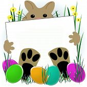 Easter bunny with big feet holding sign illustration poster