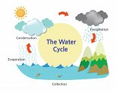 A picture describing the water cycle. Vector Illustration poster