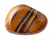 natural mineral gem stone - Tiger's eye (Tigers eye Tiger eye) gemstone isolated on white background close up poster