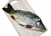Mirror carp on a cutting board Isolated on white background poster