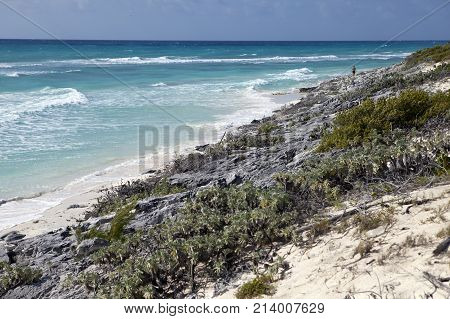 beaches of the Caribbean Sea on Cayo Largo's island Cuba