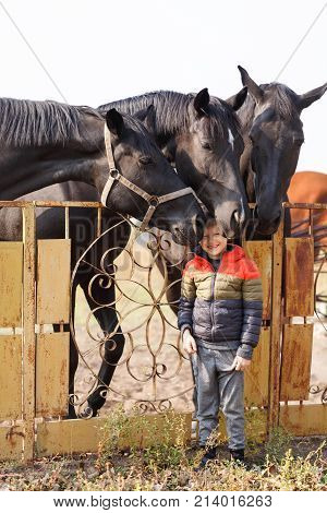 A small cute boy stands near three beautiful black horses. Outdoors.