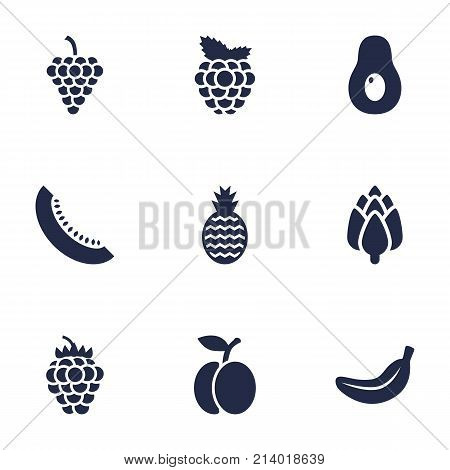 Collection Of Razz, Cantaloupe, Vineyard And Other Elements.  Set Of 9 Food Icons Set.