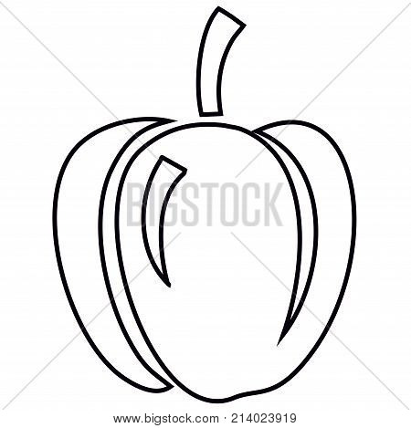 Sweet Bell Pepper. The bell pepper (also known as sweet pepper or pepper) is a cultivar group of the species Capsicum annuum. Cultivars of the plant produce fruits in different colors, including red, yellow, orange, green, chocolate/brown, vanilla/white,