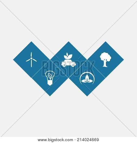 Collection Of Wood, Fan, Ecological And Other Elements.  Set Of 5 Ecology Icons Set.