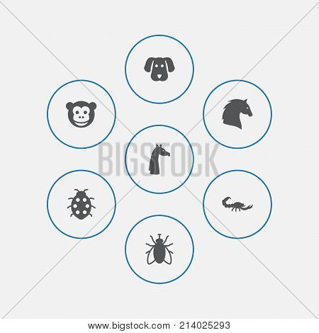 Collection Of Steed, Beetle, Ape And Other Elements.  Set Of 7 Animal Icons Set.