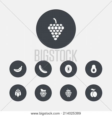 Collection Of Vineyard, Peeled, Dewberry And Other Elements.  Set Of 9 Vitamin Icons Set.
