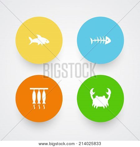 Collection Of Lobster, Smoked, Shark And Other Elements.  Set Of 4 Food Icons Set.