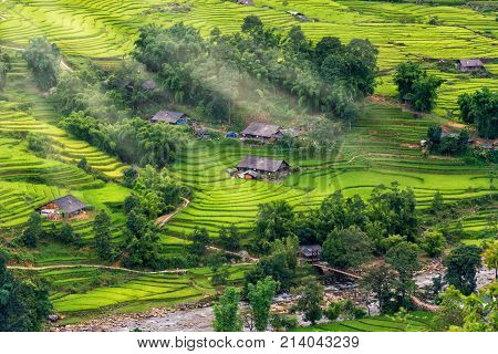 Scenery of rice fields and terrace at Mu Cang Chai Vietnam.