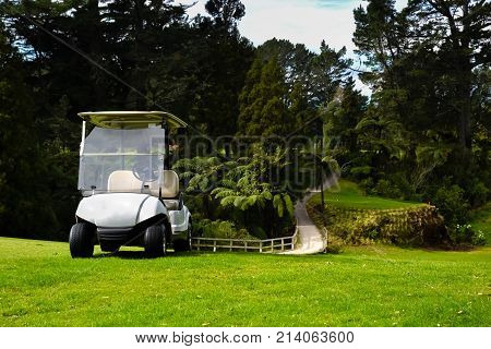 New Zealand Golf Course with Golf Kart