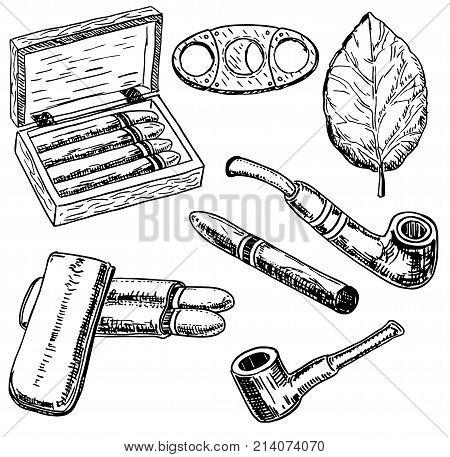 Vector ink hand drawn style tobacco set with tobacco leaf, cigars, smoking pipe, cigarette holder, humidor, etc. Vintage sketch illustration.