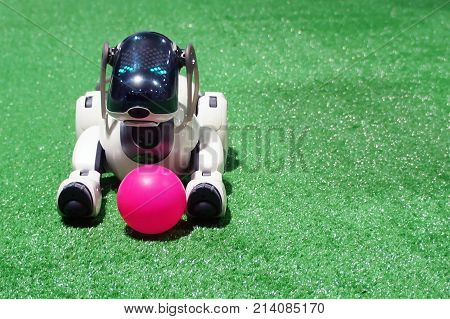 MOSCOW, RUSSIA - NOVEMBER 5, 2017: The robot dog AIBO with a ball at the exhibition. Interactive smart pet.