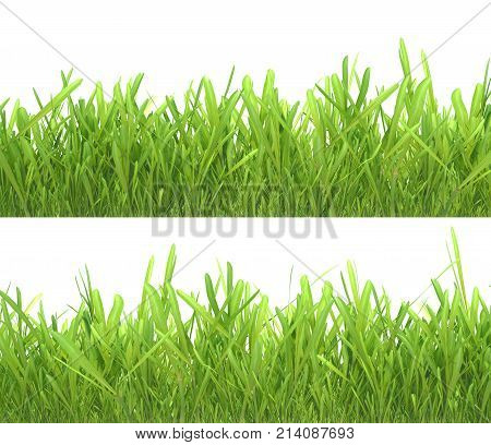 Green grass set. Nature background. Meadow. Spring, summer season. Plant growth 3d rendering