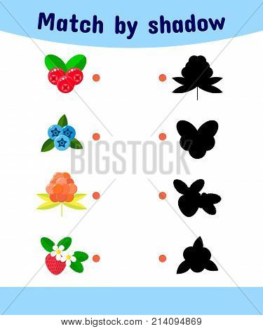 vector illustration. Matching game for children. Connect the shadow of the berries. cranberries, blueberries, cloudberries, strawberries