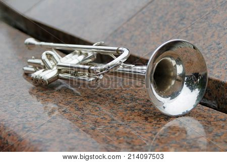 Wind instrument pipe.Wind instrument. The musical trumpet. For orchestra.