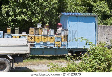 Zubova slit, Lazarevsky area, Sochi, Krasnodar region, Russia - July 1, 2014: Mobile apiary