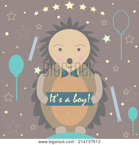 Baby Boy Birth announcement. Cute Hedgehog announces the arrival of a baby boy. From Baby Shower Collection. Vector Illustration.